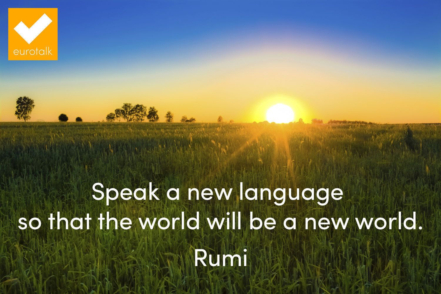 """""""Speak a new language so that the world will be a new world."""" Rumi"""