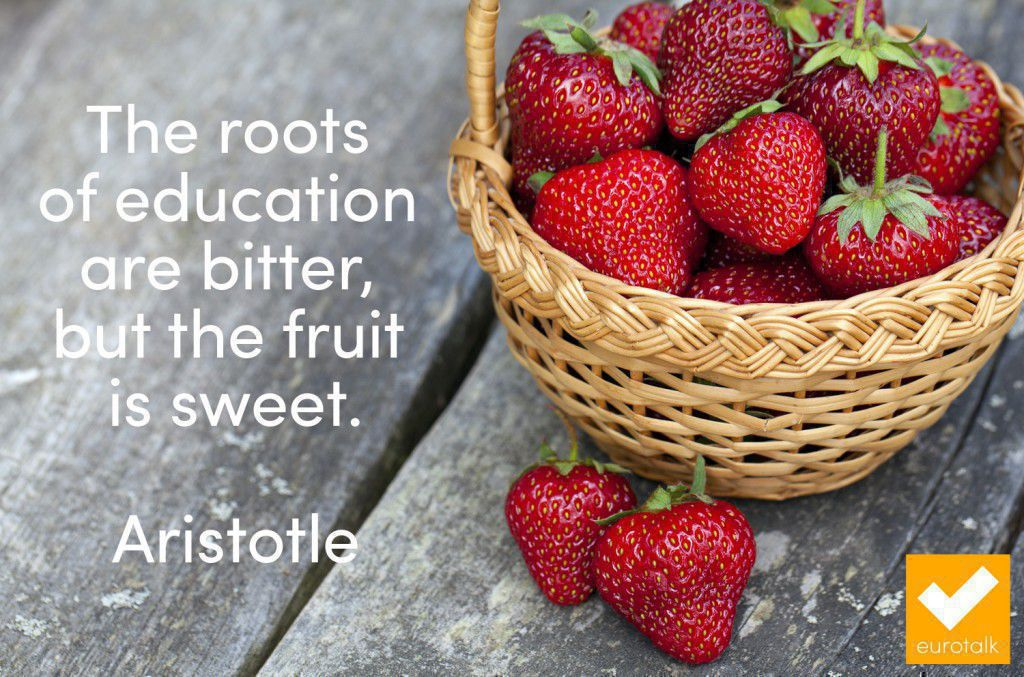 """The roots of education are bitter, but the fruit is sweet."" Aristotle"