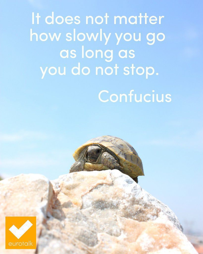 """It does not matter how slowly you go as long as you do not stop."" Confucius"