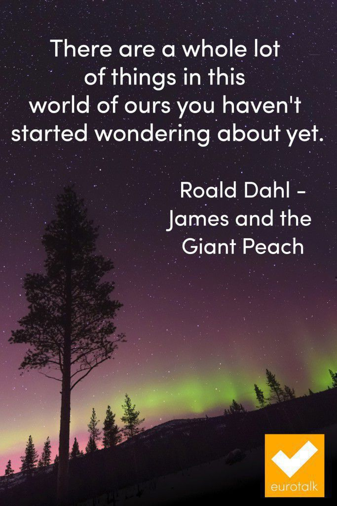 """There are a whole lot of things in this world of ours you haven't started wondering about yet."" Roald Dahl"