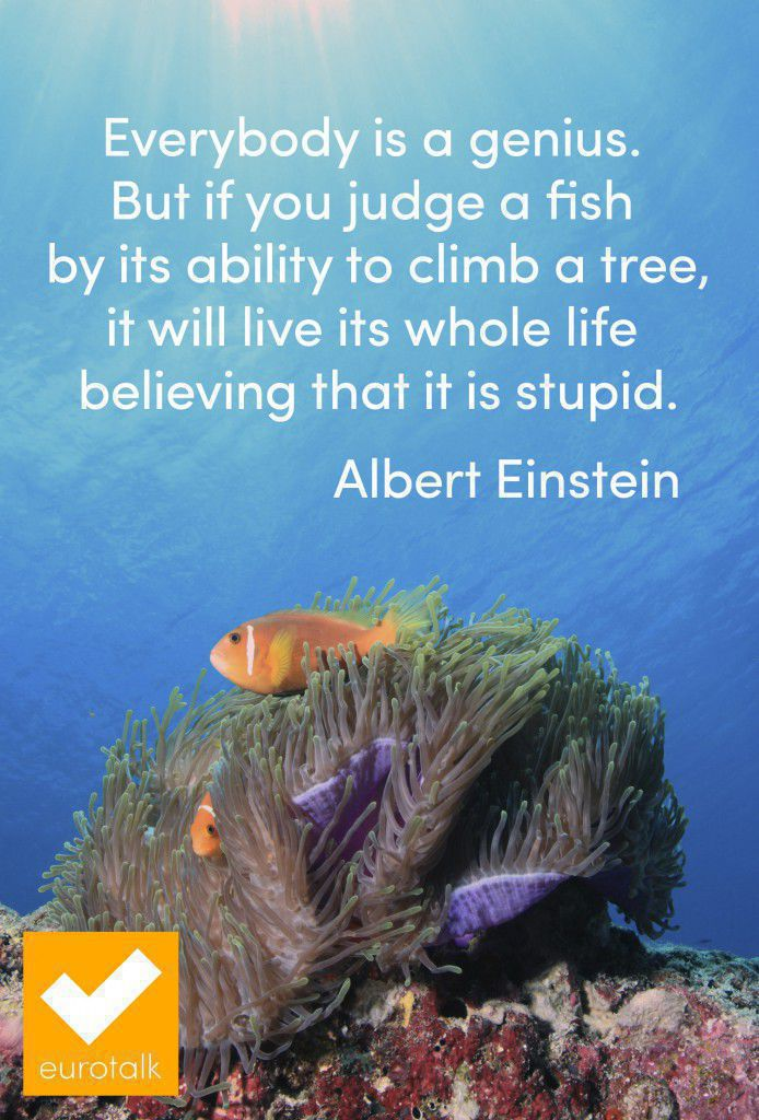 """Everybody is a genius.  But if you judge a fish  by its ability to climb a tree, it will live its whole life  believing that it is stupid."" Albert Einstein"
