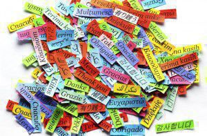 How do you choose which language to learn?