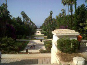 Algiers botanical garden