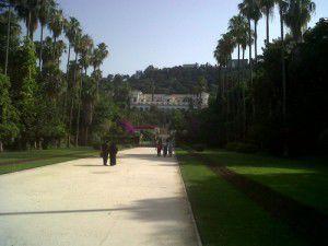 Le Jardin d'Essais du Hamma