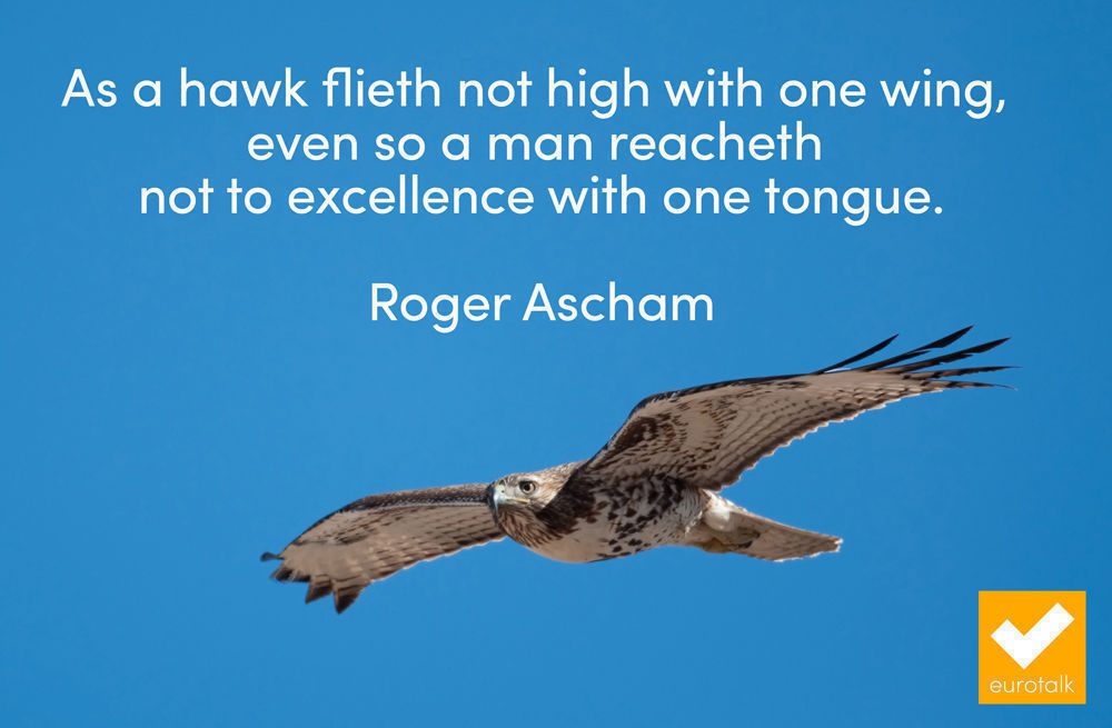 """""""As a hawk flieth not high with one wing, even so a man reacheth not to excellence with one tongue."""" Roger Ascham"""