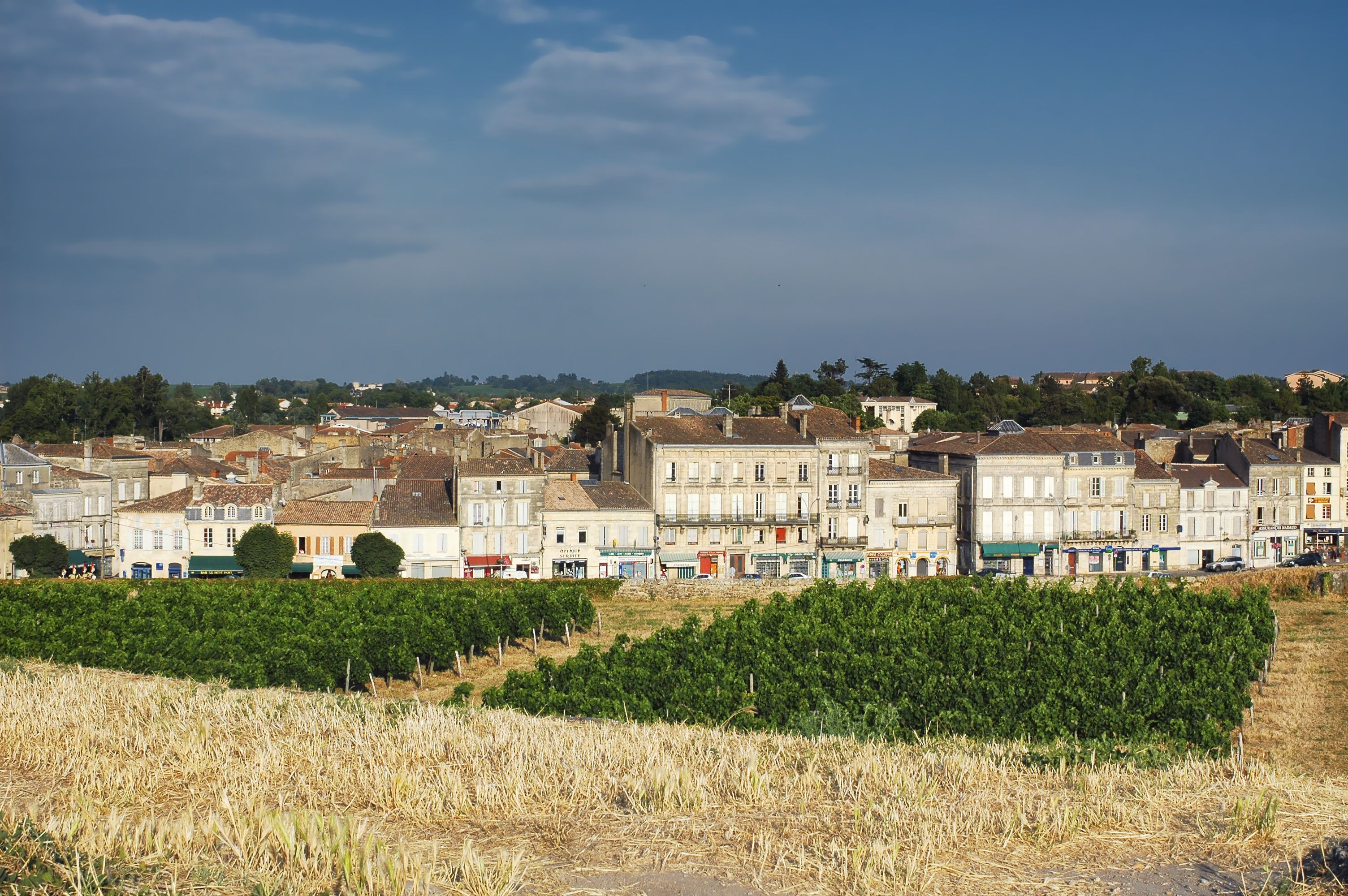 Blaye (Gironde, Aquitaine, France): the historic town with vineyard