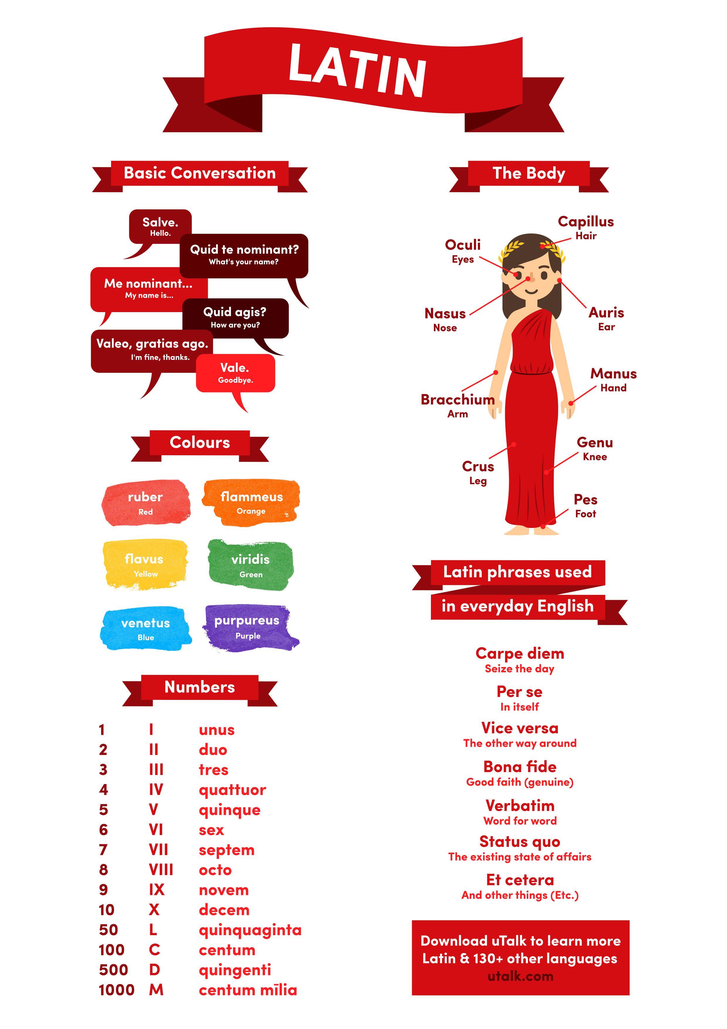 Beginner's guide to Latin