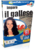 Impara Gallese - Talk Now Gallese
