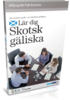 Talk Business Höglandsskotska